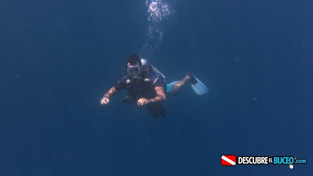 Summer Adventure: Scuba Diving In La Media Luna